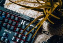 myszka gamingowa jaką wybrać
